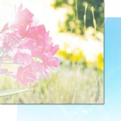 Лист скрапбумаги 7 Dots Studio - Verano Azul - Pureness, 30*30 см