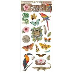 Чипборд  AMAZONIA 15*30 см,  Stamperia