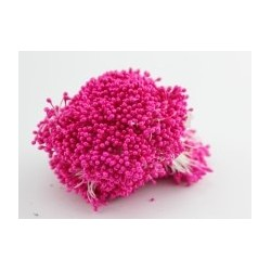 Тычинки двухсторонние Малиновые, глазурь, 200-250 нитей (400-500 тычинок)
