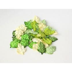 Листья шиповника 3,5х2,5см, Зеленый Микс, 10 шт.