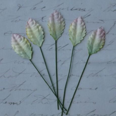 Листики 10 шт. 25мм 2-tone green/white Mulberry Paper Leaves