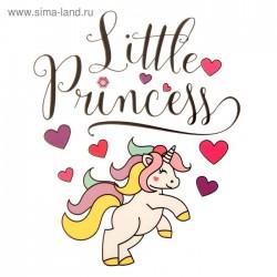 """Термонаклейка для декорирования текстильных изделий """"Little Princess"""", 14 х 14 см"""