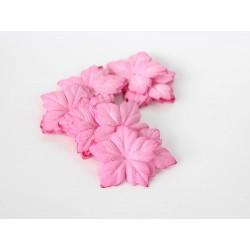 Пуансетия Розовые, 4 см, 10 шт.