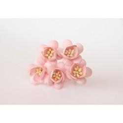 Цветы вишни розово-персиковые, 5 шт. 25мм