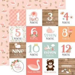 Лист скрапбумаги BABY GIRL Milestone Cards 30,5*30,5 см, Echo Park Paper